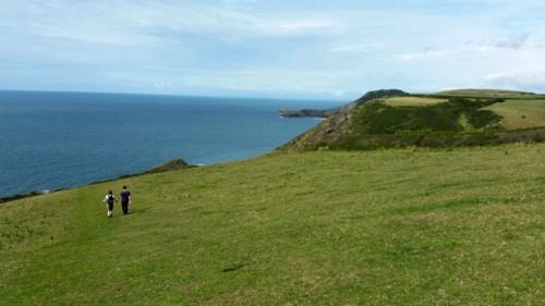 Walking in Pembrokeshire - BirdSol
